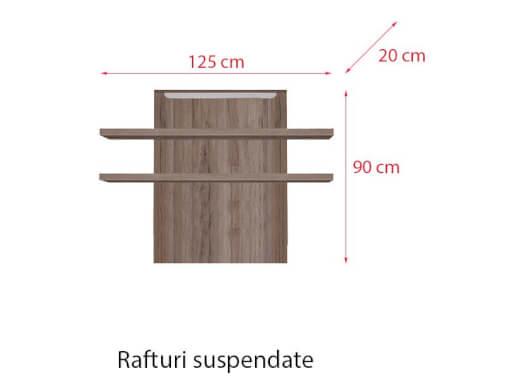 Rafturi-suspendate-84