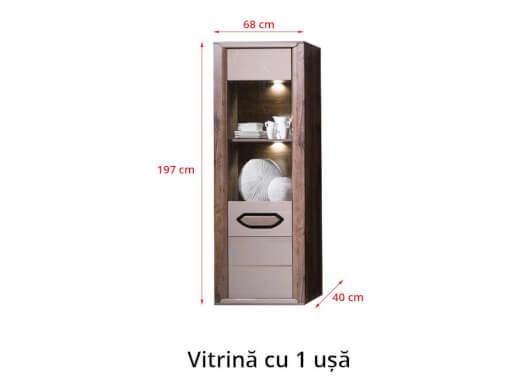 Vitrina-cu-1-usa-c4